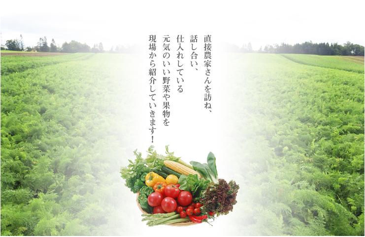 直接農家さんを訪ね、話し合い、仕入れしている元気のいい野菜や果物を現場から紹介していきます!