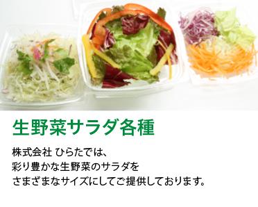 生野菜サラダ各種