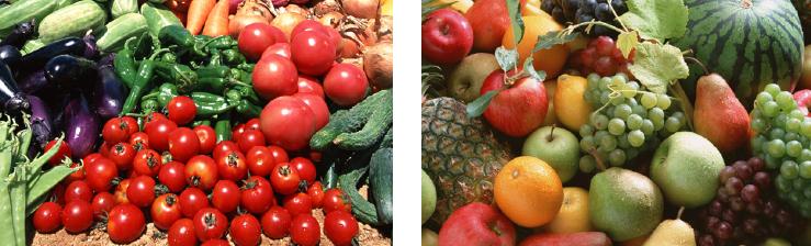 さまざまな野菜や果物を取り扱っております。