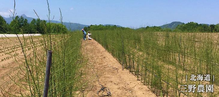 北海道にある三野農園さん